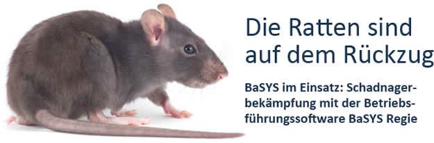 Die Ratten sind auf dem Rückzug